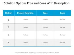 Solution Options Pros And Cons With Description