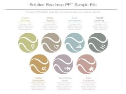 Solution Roadmap Ppt Sample File
