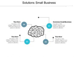 Solutions Small Business Ppt Powerpoint Presentation Pictures Example Topics Cpb
