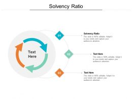 Solvency Ratio Ppt Powerpoint Presentation Professional Model Cpb