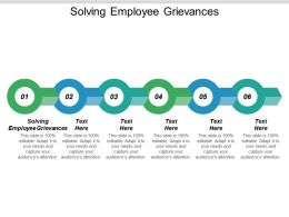 Solving Employee Grievances Ppt Powerpoint Presentation Show Visuals Cpb