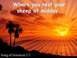 Song Of Solomon 1 7 You Rest Your Sheep At Midday Powerpoint Church Sermon