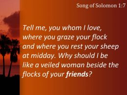 song_of_solomon_1_7_you_rest_your_sheep_at_midday_powerpoint_church_sermon_Slide03
