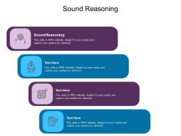 Sound Reasoning Ppt Powerpoint Presentation Inspiration Example Introduction Cpb