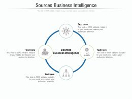 Sources Business Intelligence Ppt Powerpoint Presentation Styles Maker Cpb