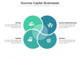 Sources Capital Businesses Ppt Powerpoint Presentation Infographics Examples Cpb