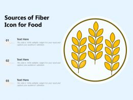 Sources Of Fiber Icon For Food