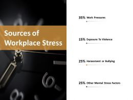 Sources Of Workplace Stress Ppt Slides Infographic Template