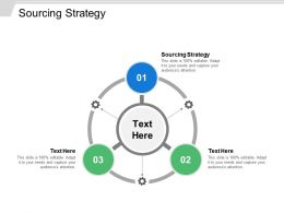Sourcing Strategy Ppt Powerpoint Presentation File Good Cpb