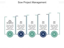 Sow Project Management Ppt Powerpoint Presentation Ideas Graphics Download Cpb