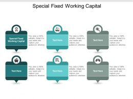 Special Fixed Working Capital Ppt Powerpoint Presentation Gallery Brochure Cpb