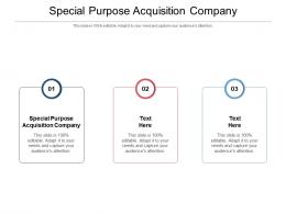 Special Purpose Acquisition Company Ppt Powerpoint Presentation Gallery Example Introduction Cpb