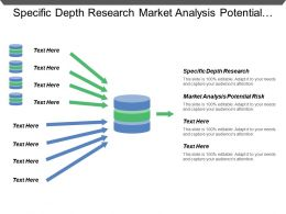 Specific Depth Research Market Analysis Potential Risk Competitive Analysis