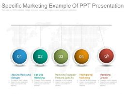 Specific Marketing Example Of Ppt Presentation
