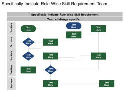 Specifically Indicate Role Wise Skill Requirement Team Challenge Specific