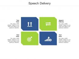 Speech Delivery Ppt Powerpoint Presentation Infographics Model Cpb