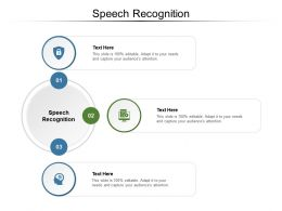 Speech Recognition Ppt Powerpoint Presentation Styles Show Cpb