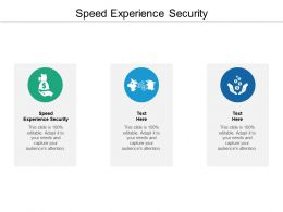 Speed Experience Security Ppt Powerpoint Presentation File Example Topics Cpb