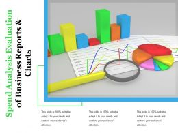 Spend Analysis Evaluation Of Business Reports And Charts
