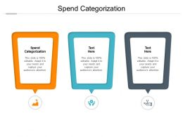 Spend Categorization Ppt Powerpoint Presentation Summary Ideas Cpb