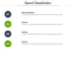 Spend Classification Ppt Powerpoint Presentation Outline Ideas Cpb