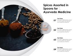 Spices Assorted In Spoons For Ayurveda Medicine