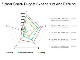 Spider Chart Budget Expenditure And Earning