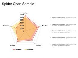 Spider Chart Sample