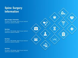 Spine Surgery Information Ppt Powerpoint Presentation Professional Skills
