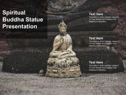 Spiritual Buddha Statue Presentation