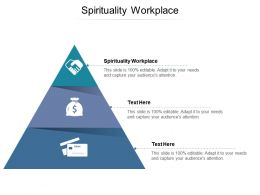 Spirituality Workplace Ppt Powerpoint Presentation Outline Template Cpb