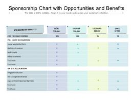 Sponsorship Chart With Opportunities And Benefits