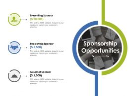 Sponsorship Opportunities Ppt Layouts Portfolio