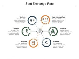 Spot Exchange Rate Ppt Powerpoint Presentation Model Files Cpb