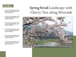 Spring Break Landscape With Cherry Tree Along Riverside