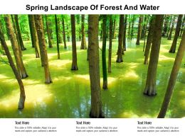 Spring Landscape Of Forest And Water