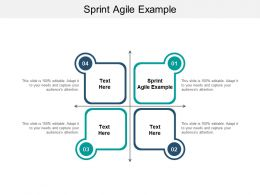 Sprint Agile Example Ppt Powerpoint Presentation Model Show Cpb