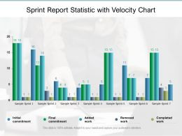 Sprint Report Statistic With Velocity Chart