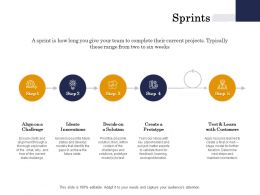 Sprints Solution Customers Ppt Powerpoint Presentation File Deck