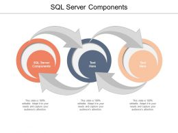 SQL Server Components Ppt Powerpoint Presentation Gallery Display Cpb