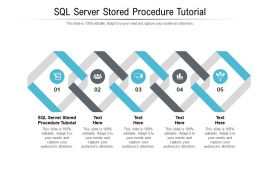 SQL Server Stored Procedure Tutorial Ppt Powerpoint Presentation Pictures Example Introduction Cpb