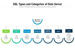 SQL Types And Categories Of Data Server