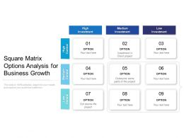 Square Matrix Options Analysis For Business Growth