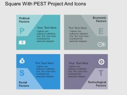 Square With Pest Project And Icons Flat Powerpoint Design