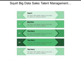 Squirt Big Data Sales Talent Management Growth Rate