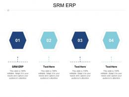 SRM ERP Ppt Powerpoint Presentation Icon Cpb