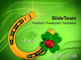 St Patricks Day 3d Lucky Symbol With Lady Bug Irish Culture Templates Ppt Backgrounds For Slides