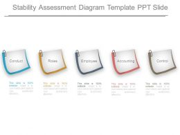 Stability Assessment Diagram Template Ppt Slide