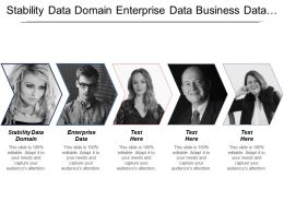 Stability Data Domain Enterprise Data Business Data Owner