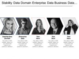 Stability Data Domain Enterprise Data Business Data Owner